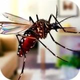 超级蚊子乱斗手机